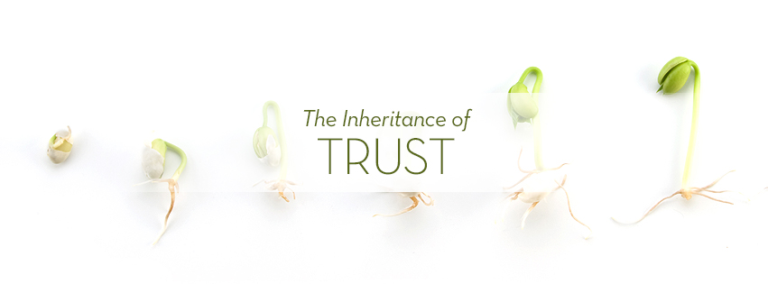 The Inheritance of God: TRUST over growing seeds