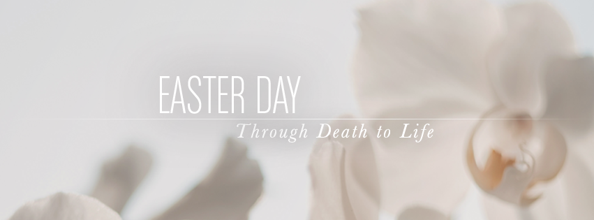 Easter Day facebook cover - lilies