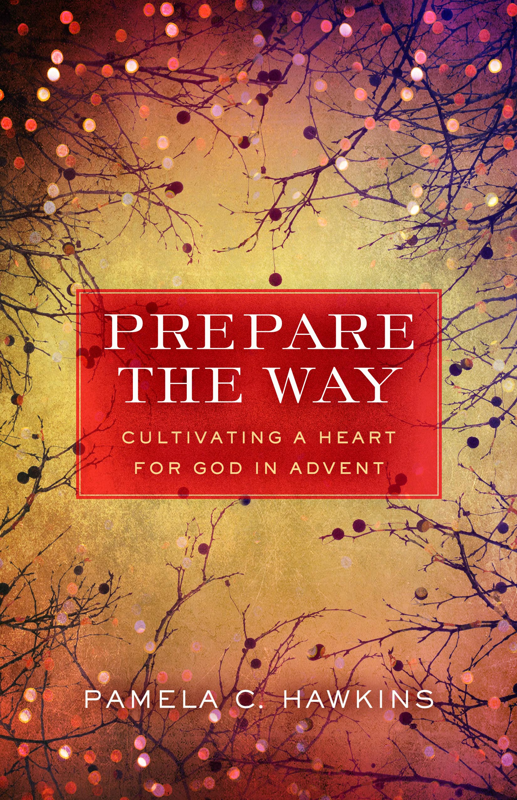 Prepare the Way - Pam Hawkins book cover