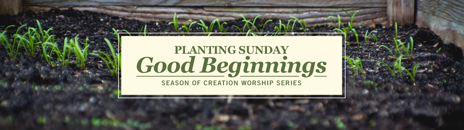 Planting Sunday: Good Beginnings worship series text over shoots of new grass